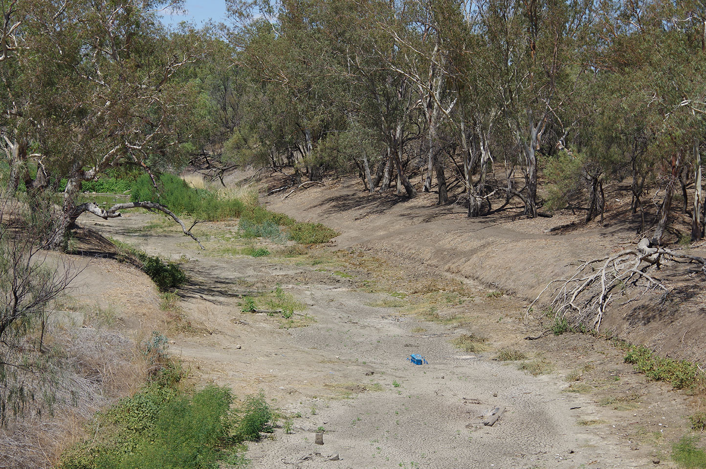 The Namoi River at Walgett was allowed to dry for months in 2018 and 2019 – causing a food and water security crisis.