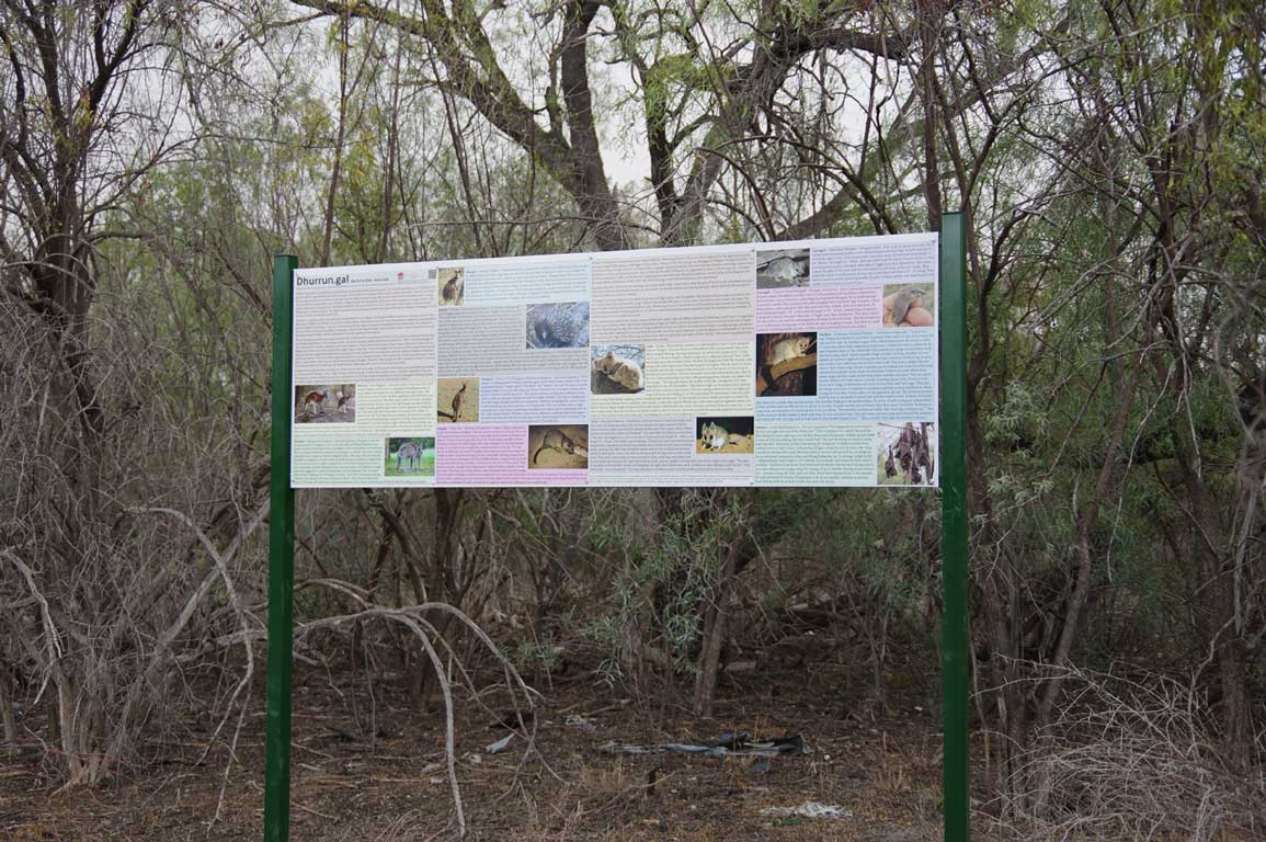Sign giving information about the mammals commonly found in Walgett
